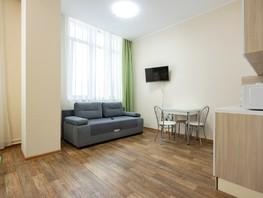 Сдается посуточно 1-комнатная квартира Партизана Железняка ул, 26  м², 2100 рублей