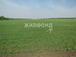 Продается Земля сельхозназначения Центральная ул, 2000  сот., 900000 рублей