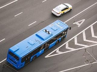 На улицах Барнаула появятся выделенные полосы для движения автобусов