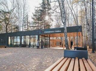 Что будет с зеленым поясом Красноярска