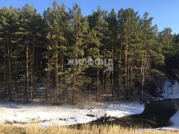 Продам  дачный участок, 15 соток, Барнаул. Фото 1.