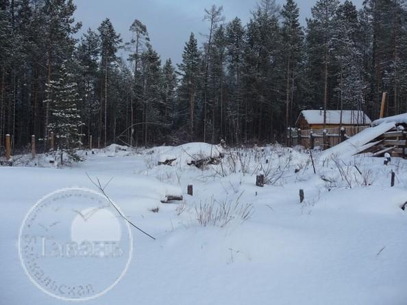 Продам  земельный участок, 600 соток, Горячинск. Фото 2.