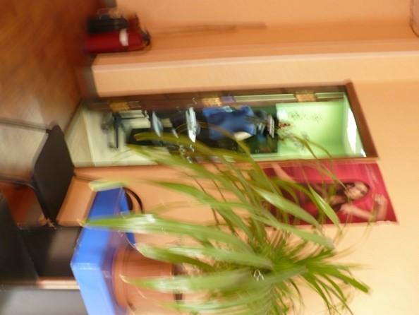 Продам готовый бизнес, 65 м², Попова ул, 7. Фото 6.