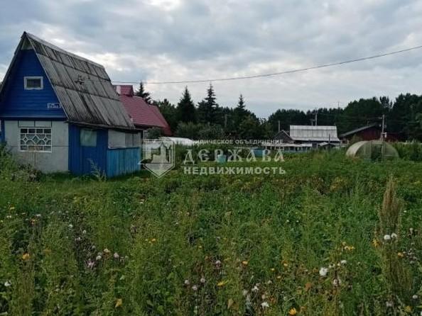 Продам дачу, 14 соток, Смирновский. Фото 10.