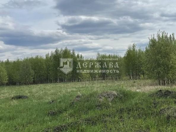 Продам  землю сельхозназначения, 10 соток, Александровка. Фото 3.