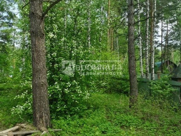 Продам  участок ИЖС, 15 соток, Елыкаево. Фото 7.