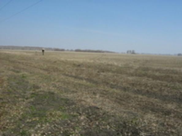Продам  земельный участок, 2200 соток, Красноярка. Фото 2.