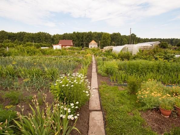 Продам дом, 54.5 м², Калтай. Фото 11.